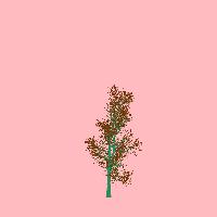 greenshift tree